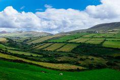 meadows Ireland, Golf Courses, Mountains, Nature, Travel, Naturaleza, Viajes, Destinations, Irish