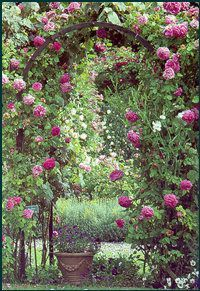 Enter my Secret Garden