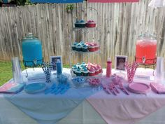 Gender Reveal Party Food Decoration