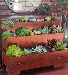 amazing inside garden in old furniture
