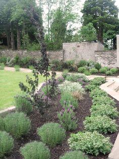 Motif Garden Design offers an exemplary service in Edinburgh merging design & nature to create beautiful, functional gardens. Plant Design, Garden Design, Edinburgh Scotland, Planting, Design Projects, Stepping Stones, Outdoor Decor, Nature, Beautiful