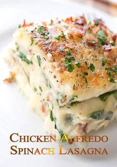 Chicken Alfredo Spinach Lasagna Recipe