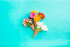 Desktop-FloralCone-Bunch.jpg (2400×1600)
