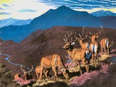 Tunnicliffe Landscapes - Isle of Arran