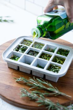 Herb Bombs| How to Freeze Fresh Herbs in Olive Oil Freezing Fresh Herbs, Freezing Cilantro, Freeze Herbs, Cooking With Fresh Herbs, Oregano Recipes, Herb Recipes, Olives, Preserving Basil, Kitchens