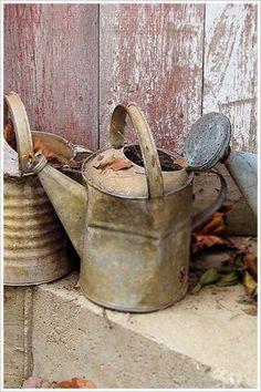 Las viejas regaderas de metal son un elemento decorativo con gran proyección en el jardín.
