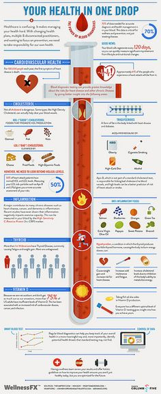 Blood Infographic-Blood tests assist health professionals in diagnosing a number of health conditions and diseases such as HIV/AIDS, cancer, diabetes, coronary heart disease and anemia.    In addition they help to evaluate how well organs such as the heart, kidneys, thyroid and liver are functioning.