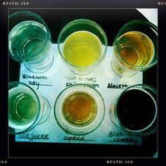 cider taster--bushwhacker cider, portland