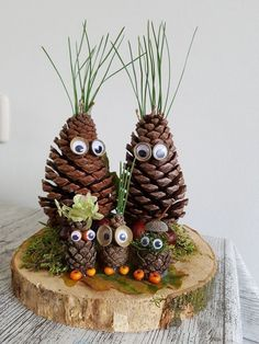 Pinecone Crafts Kids, Acorn Crafts, Pine Cone Crafts, Autumn Crafts, Nature Crafts, Christmas Crafts For Kids, Xmas Crafts, Fun Crafts, Pinecone Decor