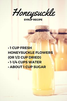 Take advantage of the delicious, medicinal properties of abundant honeysuckle with this syrup recipe. Add it to lemonade and hot tea or drizzle it over berries and ice cream. Wild Edibles, Canning Recipes, Herbal Medicine, Herbal Remedies, Simple Syrup, Just Desserts, Herbalism, Food And Drink, Healthy Recipes
