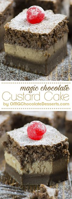 Chocolate Magic Custard Cake - Hocus – Pocus! From one cakes mix poured into your baking pan, in a very short time, you will have three fantastic chocolate layers | OMGchocolateDesserts.com