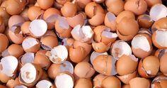 Tämän luettuani en enää koskaan heitä kananmunankuoria roskiin. Newsner tarjoaa uutisia, joilla todella on merkitystä! Healthy Soup, Cooking Tips, Health And Beauty, Easter Eggs, Health Tips, Diy And Crafts, Food And Drink, Fruit, Vegetables