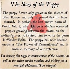 The Story Of The Poppy patriotic memorial day happy memorial day memorial day quotes memorial day images happy memorial day quotes memorial day image quotes memorial day image Well Known Poems, Memorial Day Quotes, Remembrance Day Quotes, Memorial Day Pictures, Remembrance Day Pictures, Memorial Day Prayer, History Of Memorial Day, D Day Memorial, Memorial Day Thank You