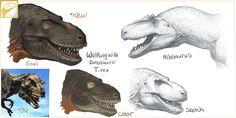 WWD T. Rex and Allosaurus by Fredthedinosaurman Dinosaur Sketch, Dinosaur Drawing, Dinosaur Art, Creature Concept Art, Creature Design, Dinosaur Projects, Reptiles, Walking With Dinosaurs, Cool Dinosaurs