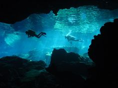 scuba+diving+caves | Cave Diver