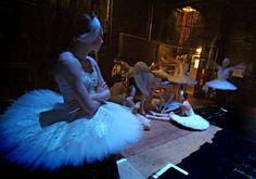 English National Ballet's Swan Lake tutu'd dancers