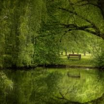 364 Best All Willows Images On Pinterest Beautiful Places Georgia