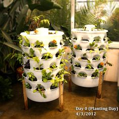 Garden Tower Project - A vertical planter with a worm tower in the center. You add kitchen scraps into the center tower which creates a compost tea that drips out the bottom, then you add it back into the plants. Each hole can grow a different plant. 50 plants in 4 sq. ft.- Strawberries, lettuce, herbs, flowers...