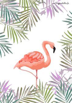 FREE PRINTABLE Poster - Flamingo - Flamant-Rose Téléchargement : www.myprintables.fr