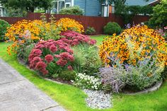 Front Yard Garden Design Completed rain garden irrigation system - Create a rich plant basin to collect and filter storm-water runoff from gutters Rain Garden Design, Garden Irrigation System, Garden Steps, Garden Guide, Low Maintenance Garden, The Ranch, Garden Planning, Backyard Landscaping, Landscaping Ideas