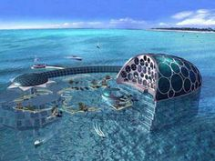 These five hotels of the future allow you to become one with the ocean. Each one is unique and offers their own sense ocean and resort in one.