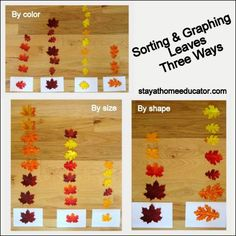 1000+ images about Fall Preschool Ideas on Pinterest | Fall Leaves ...