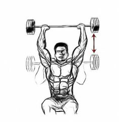 Barbell Shoulder Press is a great workout that encompasses front and side deltoids, triceps, trapezius, and your upper pectorals. Be sure to incorporate this movement in your next shoulder workout for explosive results!