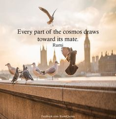 Explore inspirational, rare and life-changing Rumi quotes. Here are the 100 greatest Rumi quotations on love, dreams, transformation and existence. Rumi Love Quotes, Sufi Quotes, Poetry Quotes, Spiritual Quotes, Great Quotes, Book Quotes, Rumi Books, Rumi Poem, Jalaluddin Rumi