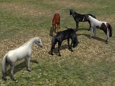 Kinematisch animierte Pferde ab EEP 9.1