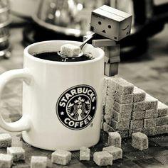 Danbo / suiker suikerklontjes / koffie / koffiemok mok / sugar / coffee / mug / starbucks coffee