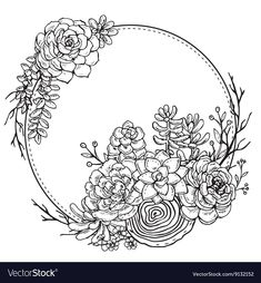Hand drawn composition of succulent plants. Vector frame with hand drawn composition of succulent plants on white background. black and white graphic frame for print, coloring book, invitation card. Succulents Drawing, Cactus Drawing, Plant Drawing, Planting Succulents, Succulent Plants, Drawing Flowers, Succulent Tattoo, Succulent Frame, Sketch Painting