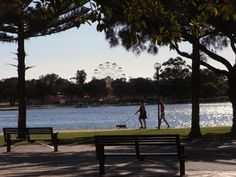 Mandurah Foreshore, Western Australia. Our favorite place to walk.