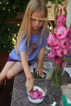Science: pollination, books, printables, experiments
