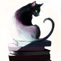 Chat - Livre / Cat - Book