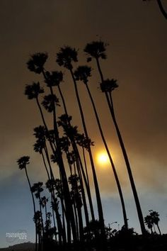 #{photography by jacquelynn buck www.jacquelynnbuck.com}, #Santa Barbara, California
