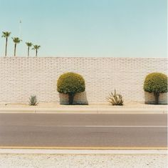 Sun City by Peter Granser Best Photo Books, New Orleans Museums, Sun City, Roadside Attractions, City Streets, Aesthetic Pictures, Fine Art Photography, Palm Trees, New Art