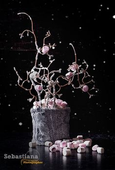 Marshmallow Tree - Marshmallows with a christmas tree decoration on rustic black background. Dark Rustic Style