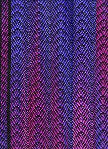 Purple-pink scallop