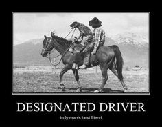 Everything About Kid Friendly German Shorthaired Pointer Puppies Temperament Mans Best Friend, Best Friends, Friends Forever, Funny Postcards, Dont Drink And Drive, Pointer Puppies, Vintage Cowgirl, German Shorthaired Pointer, Weird Pictures