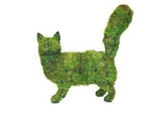 Topiary Cat 1. Get your topiary wire form 2. Stuff the form with sphagnum moss. (There are kits available.) 3. Insert topiary plants between the wires into the moss. 4. Hang or place the topiary in the required sunlight conditions (usually filtered sunlight). 5. Water well. Keep moist.