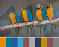 Elegant turquoise blue and orange color palette, perfect for accentuating modern interior design with orange accents