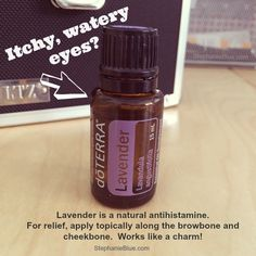 itchy eyes Itchy, Watery Eyes…Try Lavender Essential Oil Doterra Essential Oils, Young Living Essential Oils, Doterra Allergies, Natural Antihistamine, Oils For Life, Watery Eyes, Aromatherapy Recipes, Itchy Eyes, Healing Oils