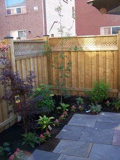 Landscape Designer: Small urban backyard turned into Garden Room