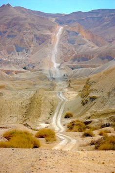 The Long Road Into the Mountains (Negrev Desert, Israel)