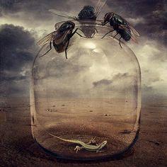artistic surreal photomanipulation by sarolta ban 22