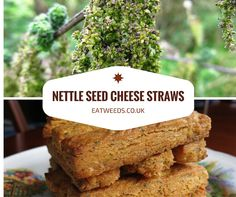 Nettle Seed Cheese Straws
