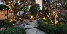 side yard with path, plants, lighting, and dry river bed
