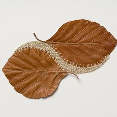 Using dry, brittle leaves as her canvas, artist Susanna Bauer creates leaf art that reimagines the stalks as sculptures and stitched pieces. Techniques Textiles, Art Techniques, Crazy Quilting, Embroidered Leaves, Nature Artists, Crochet Leaves, Painted Leaves, Nature Crafts, Nature Nature