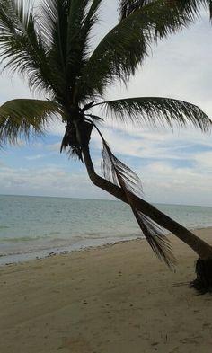 Playa de Maragogi, Brasil