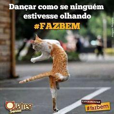 ÓTIMO INÍCIO DE SEMANA!! ❤️❤️❤️ #filhode4patas  #amocachorro  #cachorro  #gato  #amogato  #segunda